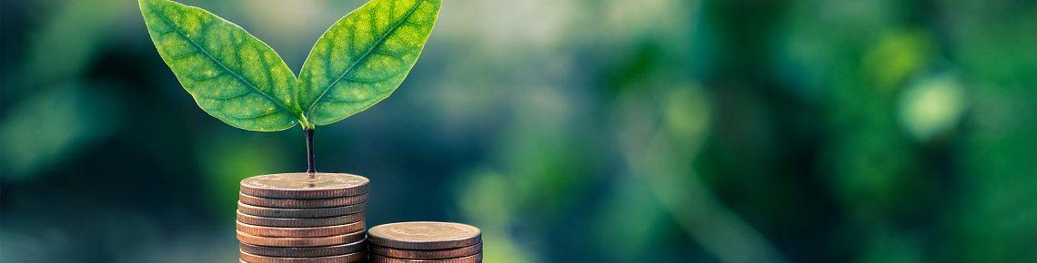 SME-Lending-options