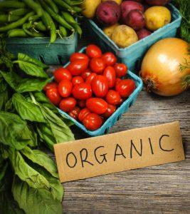 Organic-Food-Store